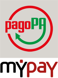 Pago on line